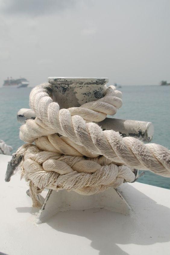 crucero o regata
