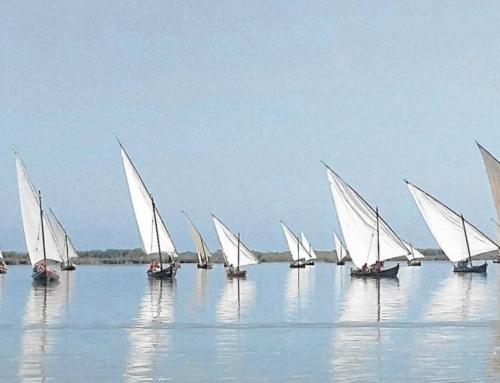 Embarcaciones históricas: barcos de vela latina