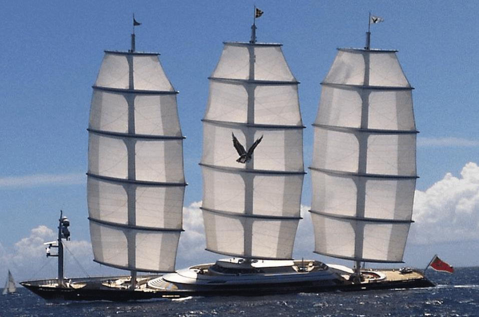 halcon maletese